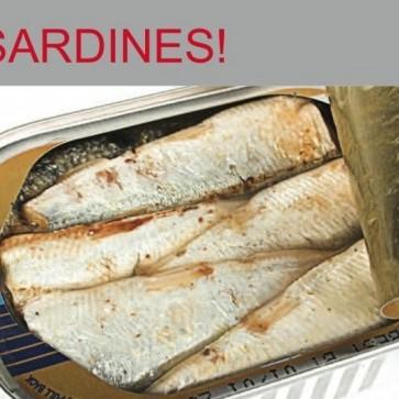 Dowshu sardines